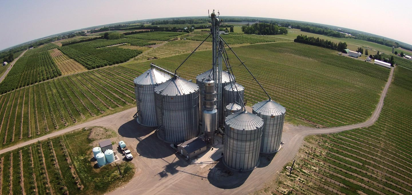 Grain and Oil Seed Silos